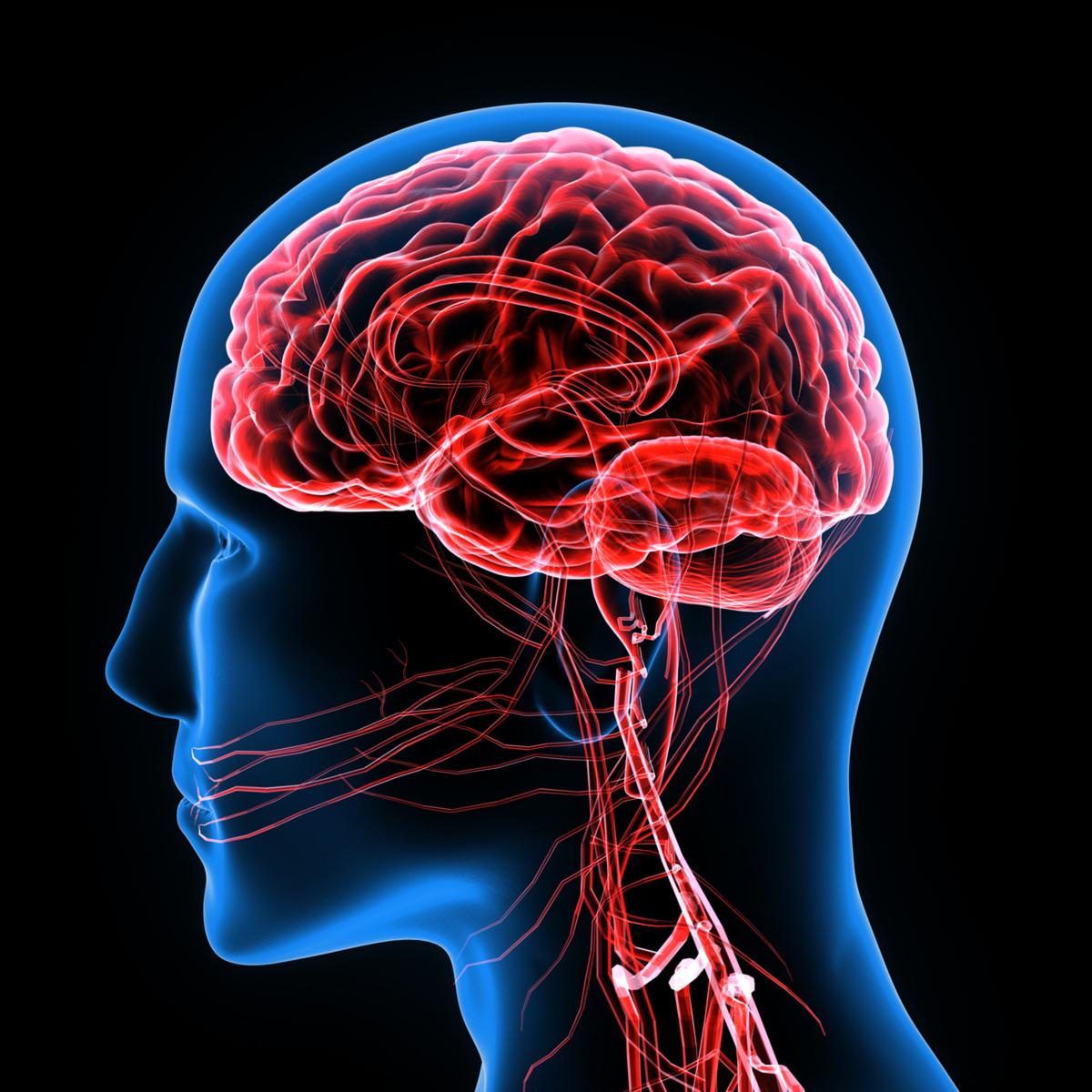 brain-disorder